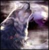 wolf_dakota userpic