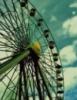 urban_magpie userpic