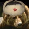 battle_bear userpic