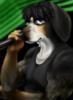 jai_coonhound1 userpic