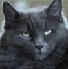soledad74 userpic