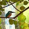Meghan: bird