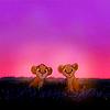 simba & nala; sunset