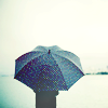 I'm sorry.  That was mean.: Stock - Walking Umbrella