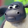 sheep: pout
