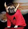 admiral wiggles intrepid space explorer