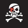 Sexton Fo.Z.D., Владимир Чижевский, Фонд загуБЛЯное детство, Пиратская партия России
