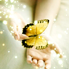 alwaysashipper: butterfly