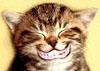 jackelene userpic