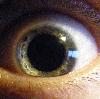 panacea1 userpic