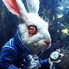 rabbit_clock userpic