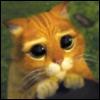 felesmalus userpic