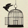 Released Caged Bird