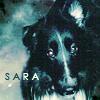 Kristin: Sara » 1994-2008
