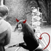 tokenblkgirl: Merlin: Angel