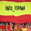 Spain National Fútbol Team