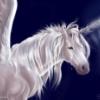 w_unicorn