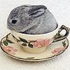 rabbitranaway userpic