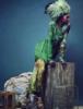 africaine: alekwek