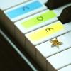 rofro05: piano