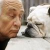 terrydog userpic