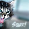 Mischief: KittenSquee!