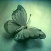 _laflemme userpic