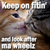 Bimbo Baggins: SPN: WINCEST KITTEHS.