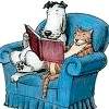 Gato e cão lendo