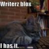 lolcat writers block