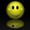 smiley w/wink reflection