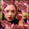 10000 lilies