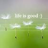 Жизнь хороша)