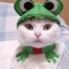 neo_otacon userpic
