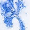in_fall_ible userpic