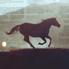 generic horse