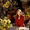 Air crash: Amy sunflowers