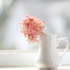 pinkpendant userpic