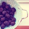 guance_pienotte userpic