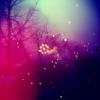 quasi_liver userpic