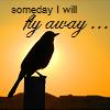 misc:someday i'll fly