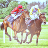 fbi_woman: Horses - Racing