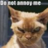 slweippert: annoy