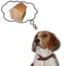 dogtorhouse userpic