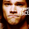 SPN-Sam-puppy face