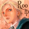 roo_lp