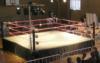 wrestlemuse userpic