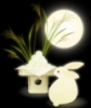 Заяц и луна