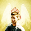 b_edshaped: dean - angles wings