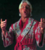 selfavowedgeek: Ric Flair